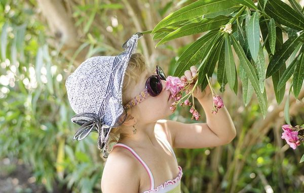 giftige stueplanter for mennesker