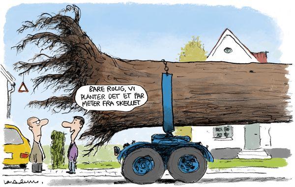 Nice Må du plante høje træer i skellet til din nabo? RT61