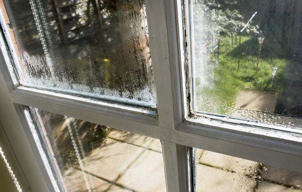 Ekstra Typiske problemer med vinduer EY45