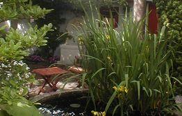 Vand i haven: Havebassinet og terrassen