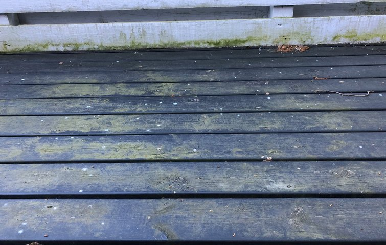 algefjerner til træterrasse