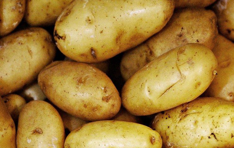hvornår er kartofler færdige