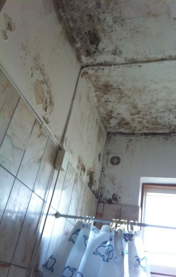 behandling af fugt i vægge